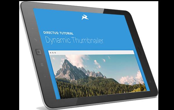 Directus website on iPad
